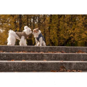 Chaqueta para perros SPIRIT