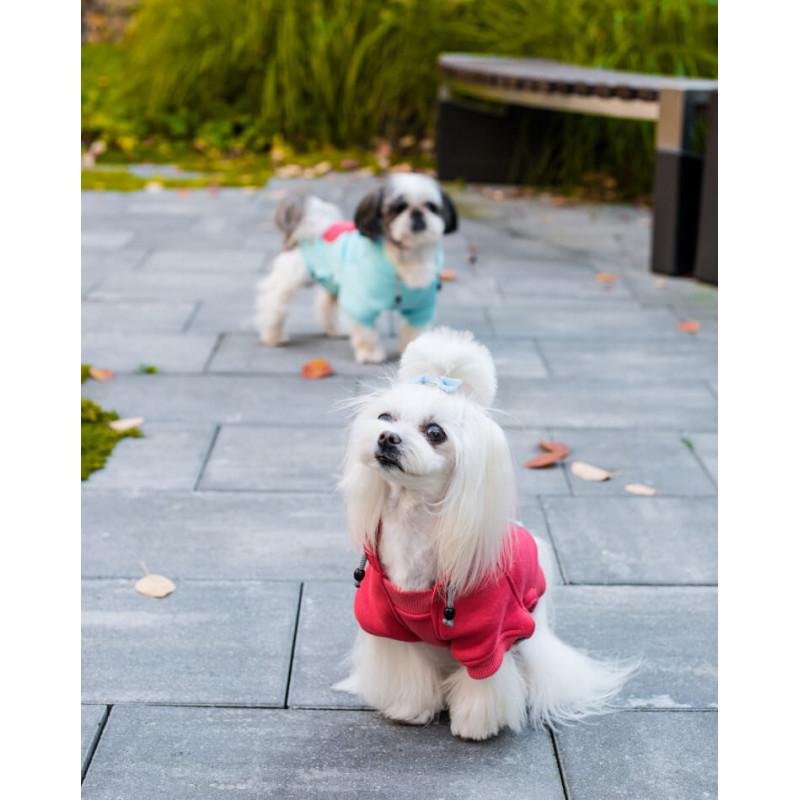 Sudadera para perro CLOUD
