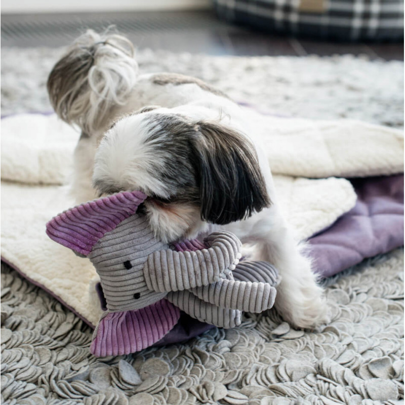 Juguete para perros TOFFY