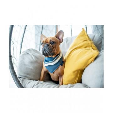 Pañuelo para perro Allure